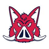 Wild hog or boar head mascot - 211875018