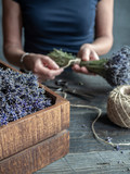 Female florist holding bunch of lavender tied by twine. Working table with wooden box of lavender, old scissors and hank of hemp twine. - 211878834