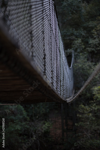 Bridge in the middle of a forest - 211881261