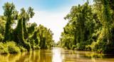 Romania, Danube Delta: Landschaft - 211904411