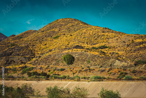 Fotobehang Honing Serene landscape with road in natural park, Almeria