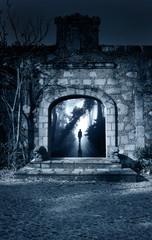 Man on road in foggy forest in open door