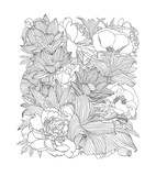 Rectangle of linear floral pattern - 211929402