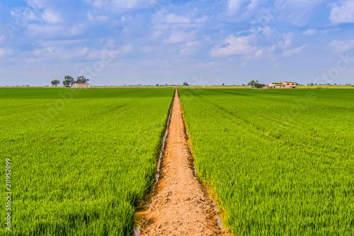 Aluminium Lente Road in a field