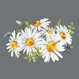 Watercolor floral composition - 211958010