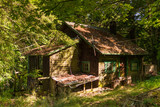 Abandoned Cottage in the Woods - 211977872