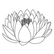 Outlined lotus pattern flower - 212032283