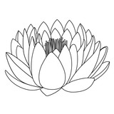 Outlined lotus pattern flower