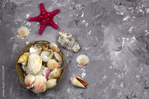 top view sea shells on a marble background with place for text - 212033489