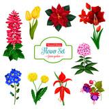 Flower icon of spring garden flowering plant - 212034697