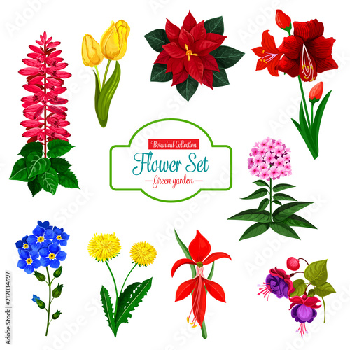 Poster Flower icon of spring garden flowering plant