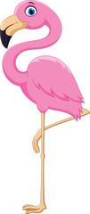 Cartoon pink flamingo bird © irwanjos
