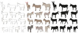 vector isolated donkey, mule, outline, collection of silhouettes