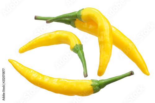 Macska sarga peppers, paths - 212070877