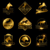 Racing horse, running mare vector vintage - 212083436