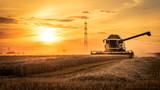 Mähdrescher erntet auf Feld im Sonnenuntergang - 212111012