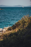 Murter shore - View on the ocean - 212114044