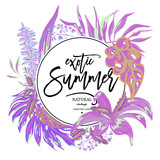 Vector summer tropical leaves, exotic greeting card - 212114495