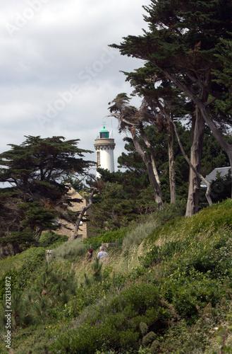 Plexiglas Vuurtoren phare de port navalo en bretagne
