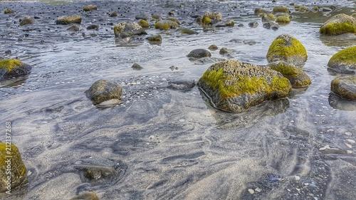 Aluminium Noordzee Strand