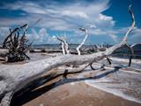 Florida Coastline - 212149295