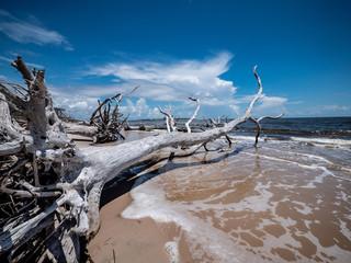 Florida Coastline © Mike