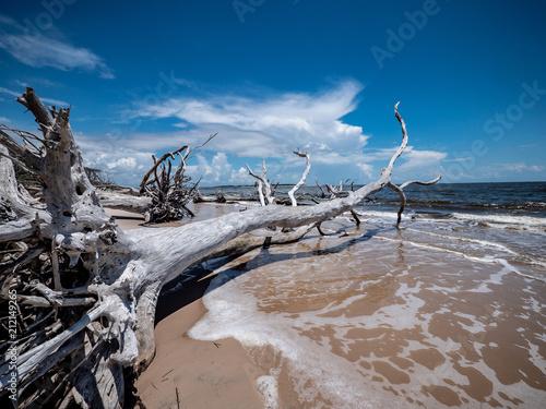 Florida Coastline - 212149265
