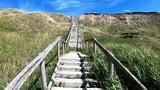 Strandtreppe, Steilküste, Treppe, Holztreppe, Stufen - 212181869