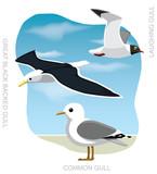 Bird Gull Set Cartoon Vector Illustration - 212189642