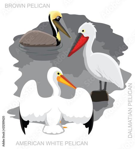 Ptasia pelikan Ustawiająca kreskówka wektoru ilustracja