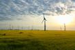 Leinwanddruck Bild - renewable energies - power generation with wind turbines in a wind farm