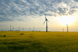 renewable energies - power generation with wind turbines in a wind farm  - 212213016