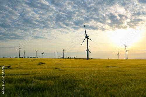 Leinwanddruck Bild renewable energies - power generation with wind turbines in a wind farm