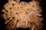 little big horn battle cheyenne painting on buffalo skin - 212221608