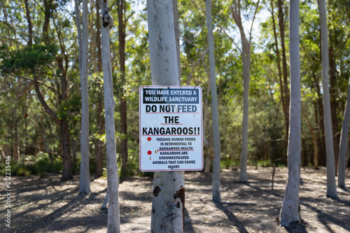 Fotobehang Kangoeroe Do not feed the Kangaroos warning sign at Morriset Park in Sydney