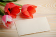 Red and pink tulips and blank greeting card on natural wooden background with space for text