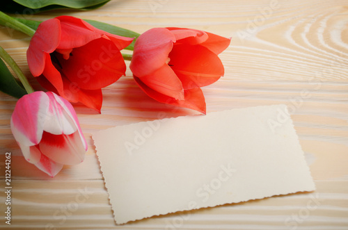 Fototapeta Red and pink tulips and blank greeting card on natural wooden background with space for text