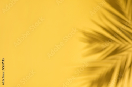 Yellow abstract background with shadows of palm leaves