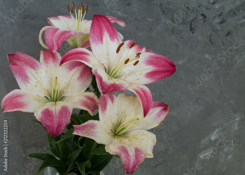 Fototapeta Bouquet with dew on lily flowers