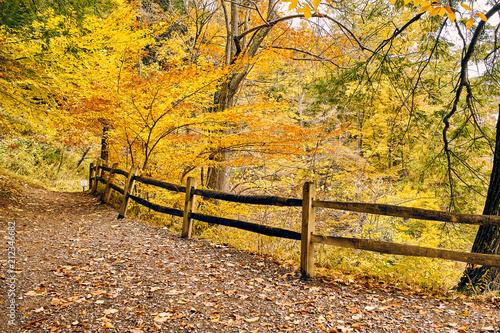 Aluminium Oranje Autumn scene