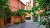 Cozy street with plants in Trastevere, Rome, Europe. Trastevere is a romantic district of Rome, along the Tiber in Rome. Turistic attraction of Rome. - 212349491