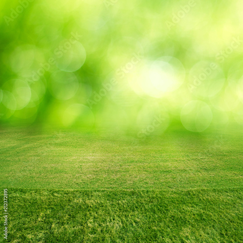 Fotobehang Lime groen Green grass field bokeh