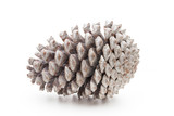 Christmas pine cone on white background. - 212375837