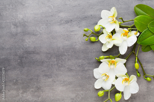 Beauty orchid on a gray background. Spa scene. - 212376079