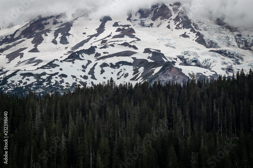 Fotobehang Bleke violet Snowy Mountain Surrounded by Trees