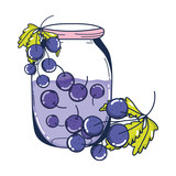 grapes healthy juice nutrition in the jar