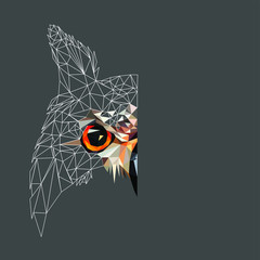 Low poly triangular and wireframe owl face on dark background, symmetrical vector illustration EPS 10 isolated.  Polygonal style trendy modern logo design. Suitable for printing on a t-shirt. © Oomi