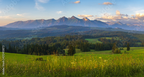 mountain meadow at the foot of the mountains- spring panorama of the Tatra Mountains, Poland