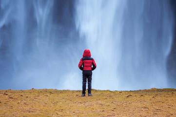 Seljalandsfoss waterfall in Iceland. Guy in red jacket looks at Seljalandsfoss waterfall. © tawatchai1990