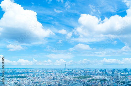 obraz lub plakat 東京風景